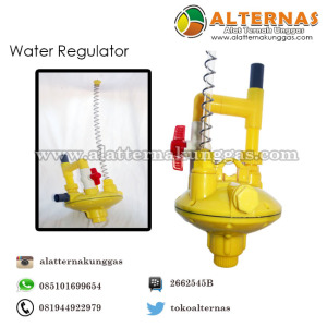 Water regulator